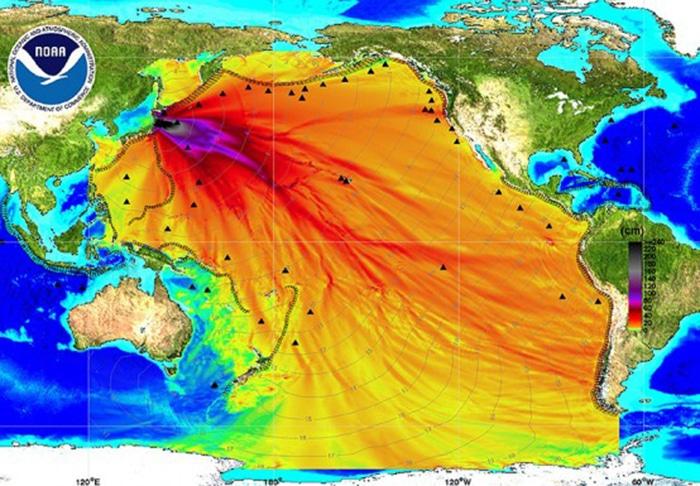Fukushima - Greenpeace dément la rumeur d'une nouvelle catastrophe écologique