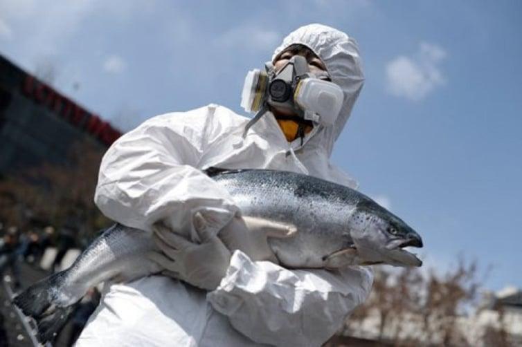 Fukushima poisson radiactif