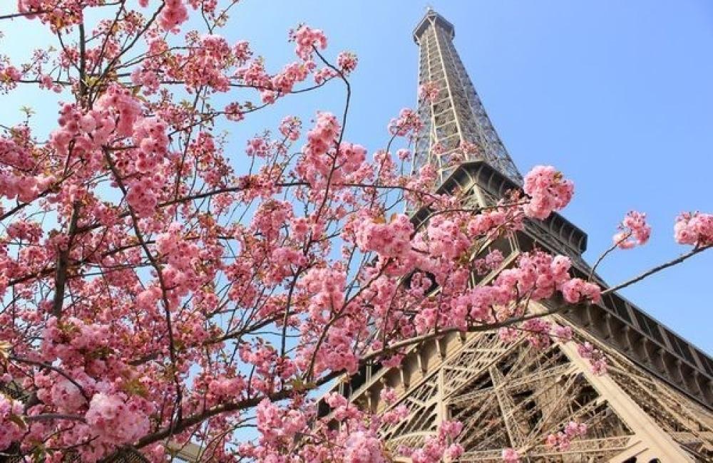 Des fleurs à Paris pour la Saint Valentin
