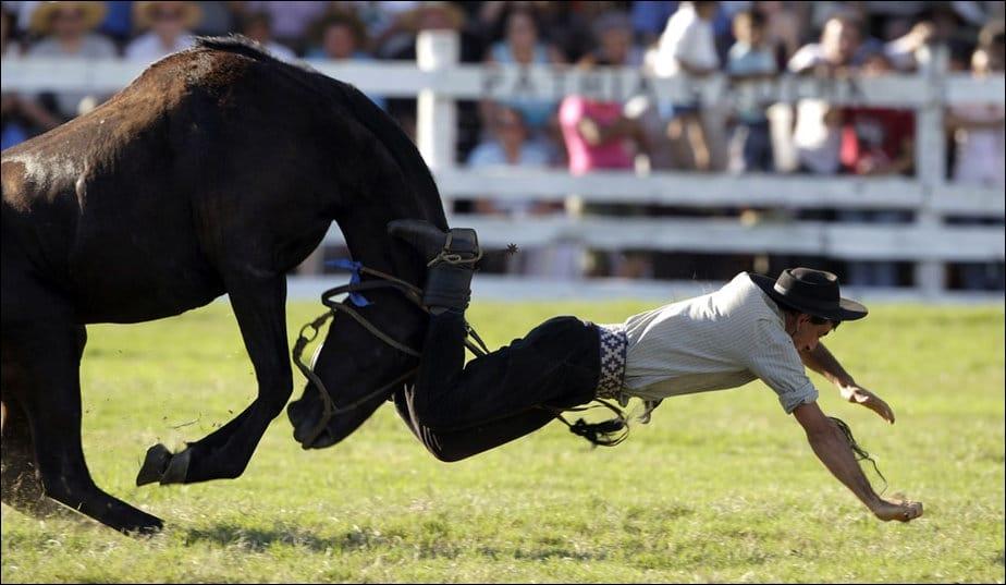 Remonter un cheval après un accident