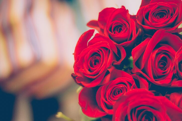 Fleur Saint Valentin